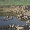 Imagenes de la macrogranja y la contaminación a nivel freático