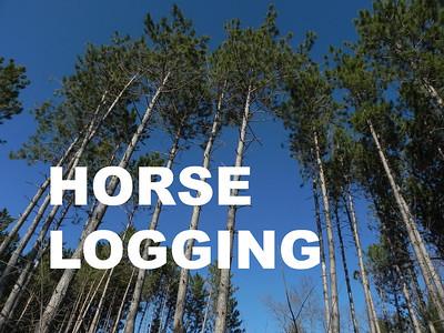 Title Image, HORSE LOGGING