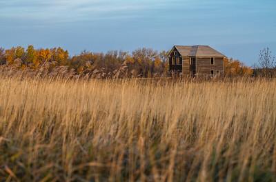 farm house abandoned farm house near Agassiz NWR Marshall County MN IMG_0229