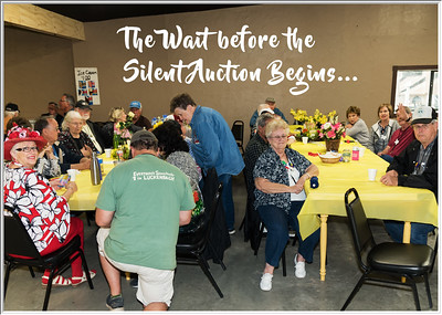 The Exciting Silent Auction