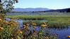 Lake Pend Oreille Slough