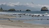 BeachScene16x9.3250