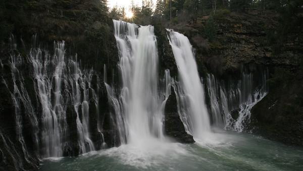 McBurney Falls, CA  Hendrick's Park, Eugene, OR Rhododendron garden