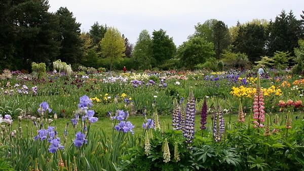 Gardens16x9.5670
