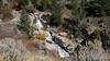 Big Horn Canyon, MT:
