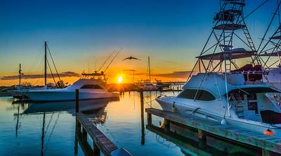 Fishing Charter Boats South Padre Island TX