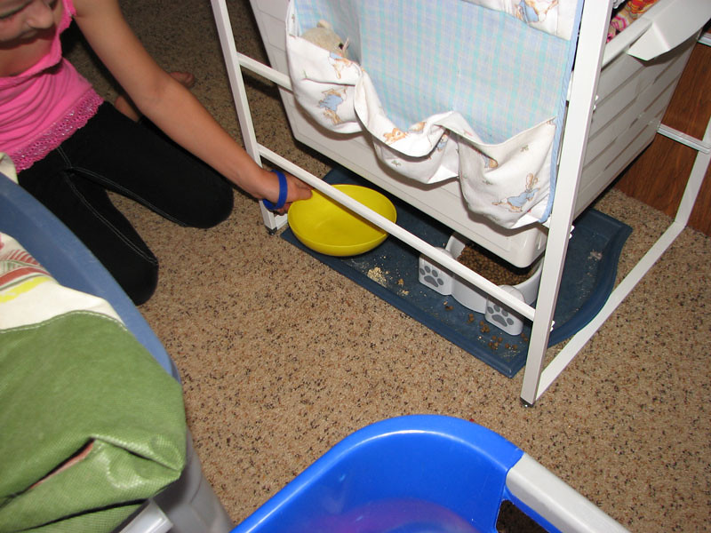 Emptying the pet water bowls ... we try to leave as much stuff in its place when we drive.