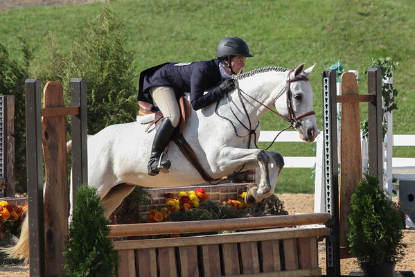 Roanoke Valley Horse Show Sunday events
