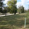 Eight trees (3 bald cypress, 3 white oak, and 2 willow oak) found in good condition at this site along the James River at 3101 E. Main St. Tall weeds were removed from some tubes even though the trees did not seem to be stunted by this competition.