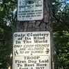 Coon Dog Cemetery near Red Bay Alabama