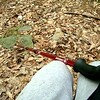 Hiking  Shenandoah Valley resting