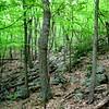 Hiking  Shenandoah Valley steep climb