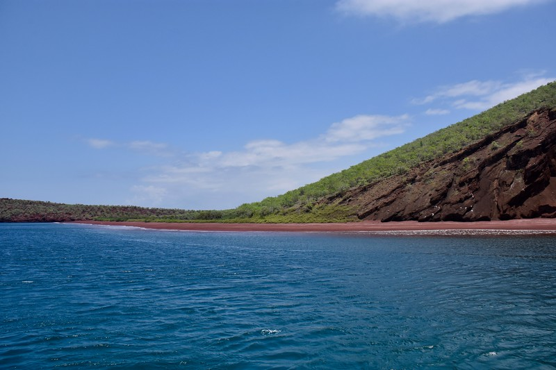 Rabida, Galapagos