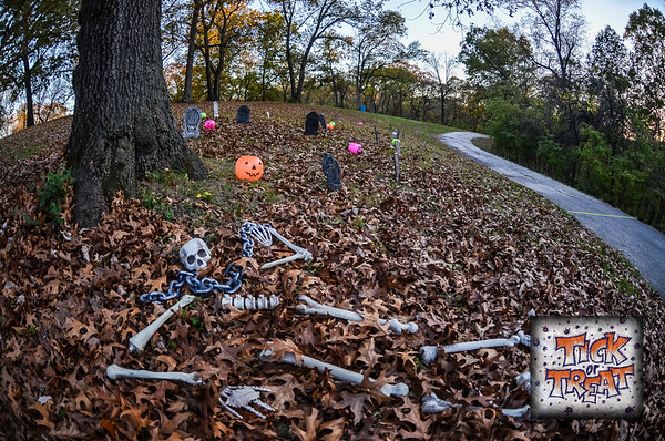 Tick or Treat 5K Night Trail Run - 2016