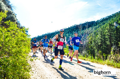 Bighorn-2019-7925