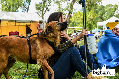 Bighorn-2019-3461