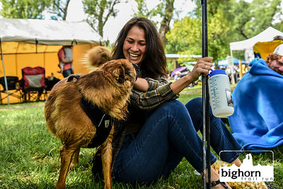Bighorn-2019-3460