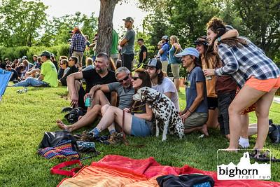 Bighorn-2019-9387