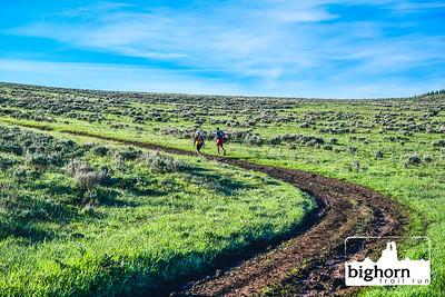 Bighorn-2019-0329