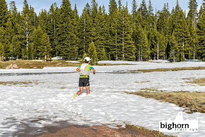 Bighorn-2019-2062