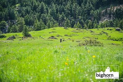 Bighorn-2019-5498