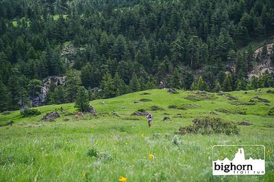 Bighorn-2019-5404