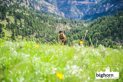 Bighorn-2019-5452