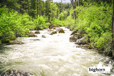 Bighorn-2019-7136