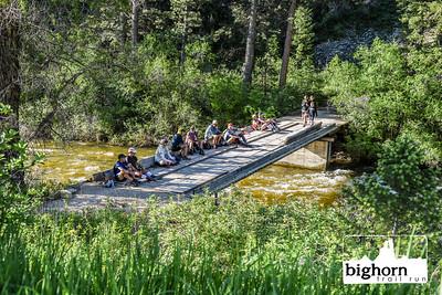 Bighorn-2019-9469