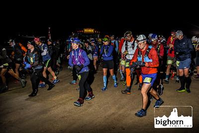 Bighorn-2019-3105