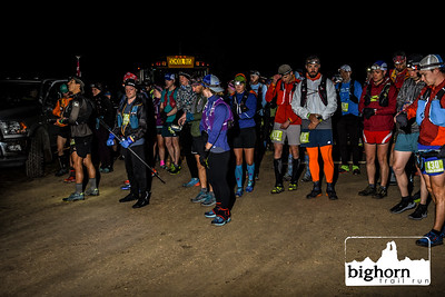 Bighorn-2019-3102