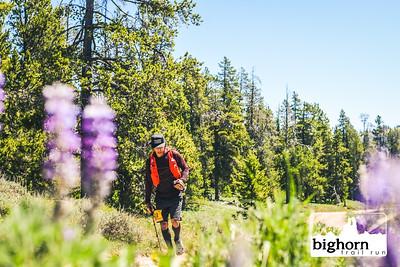 Bighorn-2021-AM-7995