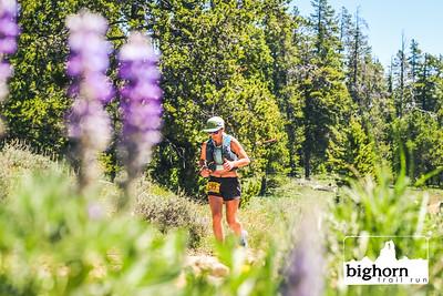 Bighorn-2021-AM-8044