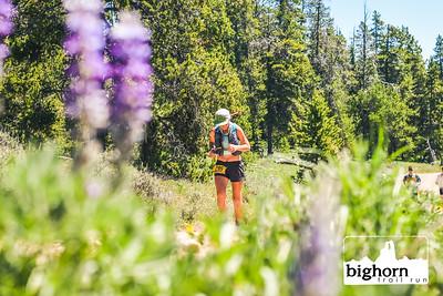 Bighorn-2021-AM-8042
