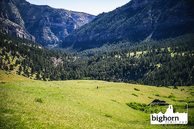 Bighorn-2021-3905