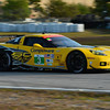 # 3 - 2013, ALMS GT2, Jan Magnussen, Antonio Garcia at Sebring