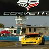 # 3 - 2013 ALMS GT2 - C6 R-007 at Sebring - 18