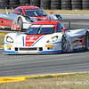 # 5 - 2014 USCR - Action Express at Daytona 24 - 05