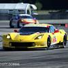 # 3 - 2014 USCR - Corv Race C7 R-003 at Sebring - 04