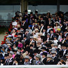 Fashion and scenes, Royal Ascot, Ascot Race Course, England, 6/18/14 photo by Mathea Kelley, waiting for the royal procession