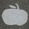 Applefest 2009 011