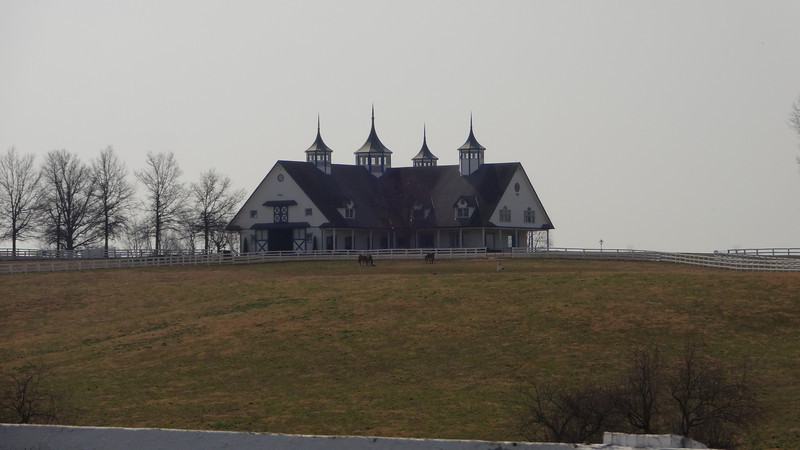Manchester Farm - one of the many famous horse farms on our route.