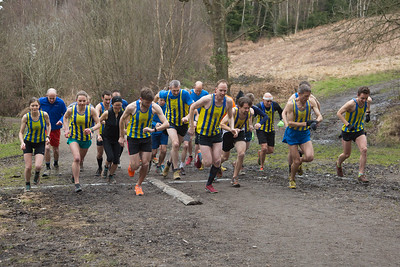 20160319-TWH-XC-Champs-0006