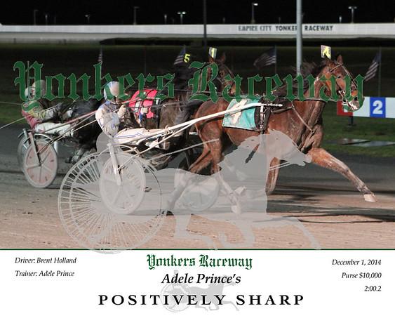 20141201 Race 8- Positively Sharp