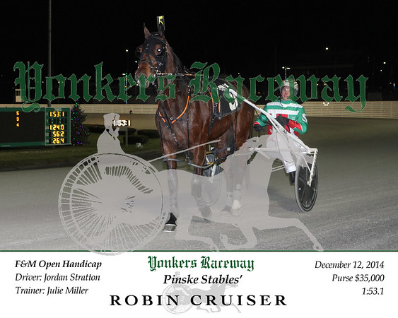 20141212 Race 6- Robin Cruiser 3