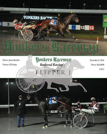 20141205 Race 9 - Flipper J
