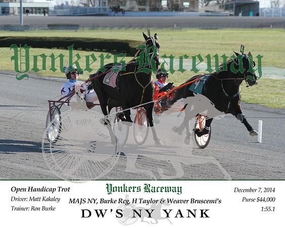 20141207 Race 5- DW's NY Yank
