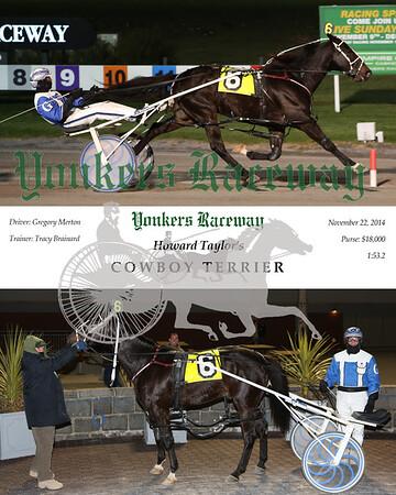 20141122 Race 5- Cowboy Terrier