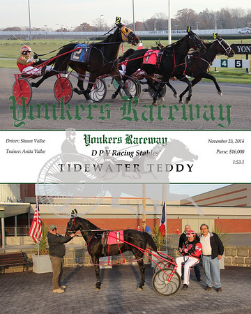 11232014 Race 12 - Tidewater teddy