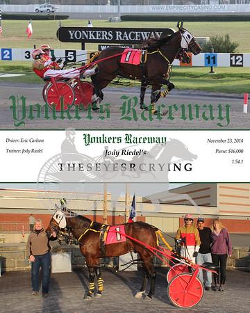11232014 Race 11 - Theseyesrcrying